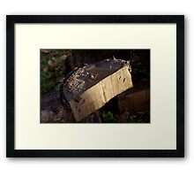 Just wood Framed Print