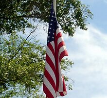 Old Glory by AuntDot