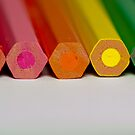 Colour Me a Rainbow by Sally Werner