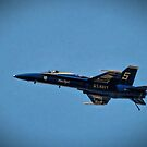 Blue Angels in Baltimore by Robin Lee