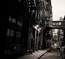 Staple Street Skybridge - New York City by Vivienne Gucwa