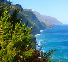 Kalalau Trail Kauai by kevin smith  skystudiohawaii