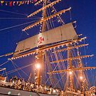 """Sagres"" Tall Ship. by terezadelpilar~ art & architecture"
