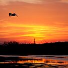 Sunset on Assateague by CMCetra