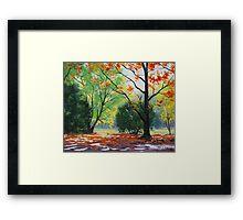 Mt Wilson Autumn, Blue Mountains Framed Print