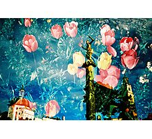 portmeirion in bloom Photographic Print