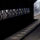 Light at the End of the Tunnel by Debbie Pinard