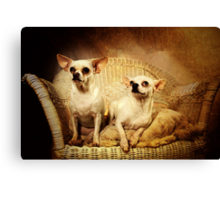 Chihuahua and the Friendship Message Canvas Print