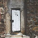 One White Door by SuzeM