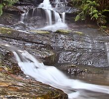Leura Cascades by William Goschnick