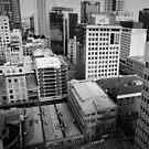 Auckland, NZ by Andrejs Jaudzems