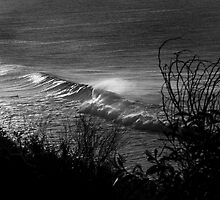 Sunrise Wave - Bells Beach by Mick Kupresanin