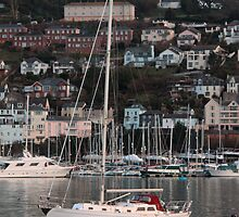yacht on the Dart by markm1892