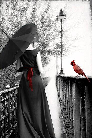 Serendipity... by Karen  Helgesen
