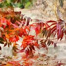 Pistachio Leaf Reflections by Elaine Teague