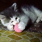 Kitten Playing With Ball by sally-w