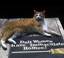 Cat on Dull Women Mat by sally-w