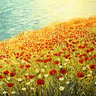 Poppies of Kaliakra II by kirilart