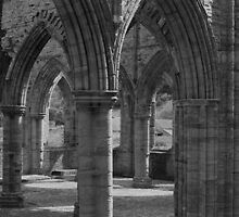 Tintern Abbey by redown