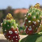 Prickly Portrait! by heatherfriedman