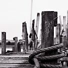 Mooring Hitch by Fotomus-Digital