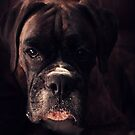 Portrait Of A Female Boxer by Evita