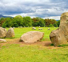 Castlerigg Stone Circle by Pauline Tims
