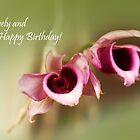 birthday greetings by lensbaby