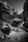 The Ancient Amphitheatre by Mieke Boynton