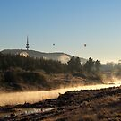 Mist on the Molonglo by Tim Coleman