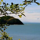 Ironpot - Capricorn Coast, Queensland.  by Margaret Stanton
