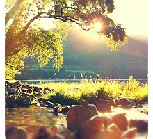 Morning sun over Grasmere by tranquillian