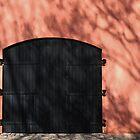Door by InaLina