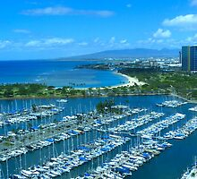 View From the Top of the Ilikai Hotel - Honolulu, HI - April 2012 by hanforddennis