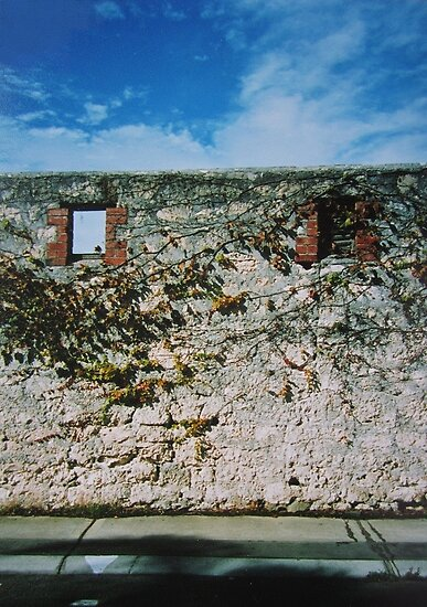 Limestone Wall  by Thea.T Photography