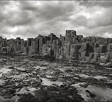 Boneyard Bold II by Peter Hill