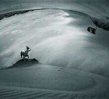 the dog by Simon Siwak