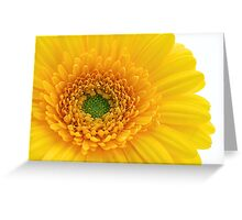 Vibrant Yellow Greeting Card