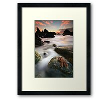 Starfish at Cape Foulwind Framed Print