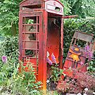 An overgrown telephone box by Keith Larby