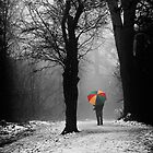 A Lonely Winters Walk by Patricia Jacobs CPAGB