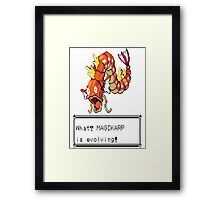 Magikarp Why? Framed Print