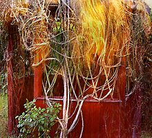 red summer house... fire of 58' by banrai