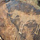 Petroglyphs by iPostnikov