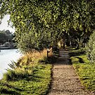 Riverside walk by Roxy J