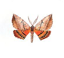 Chelepteryx chalepteryx by art-by-hughie