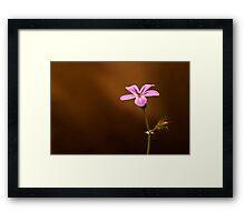 Little Girly Flower Framed Print