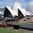 There's an Opera House at the bottom of our Garden by TonyCrehan