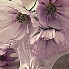 Cosmos On Pedestal by Sandra Foster
