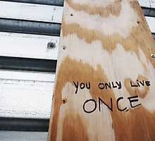 You Only Live Once! by LittleMonzie